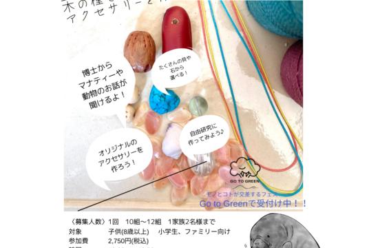 夏休み企画*ワークショップ*生態を知り貝や石、木の種を使ってアクセサリーを作る